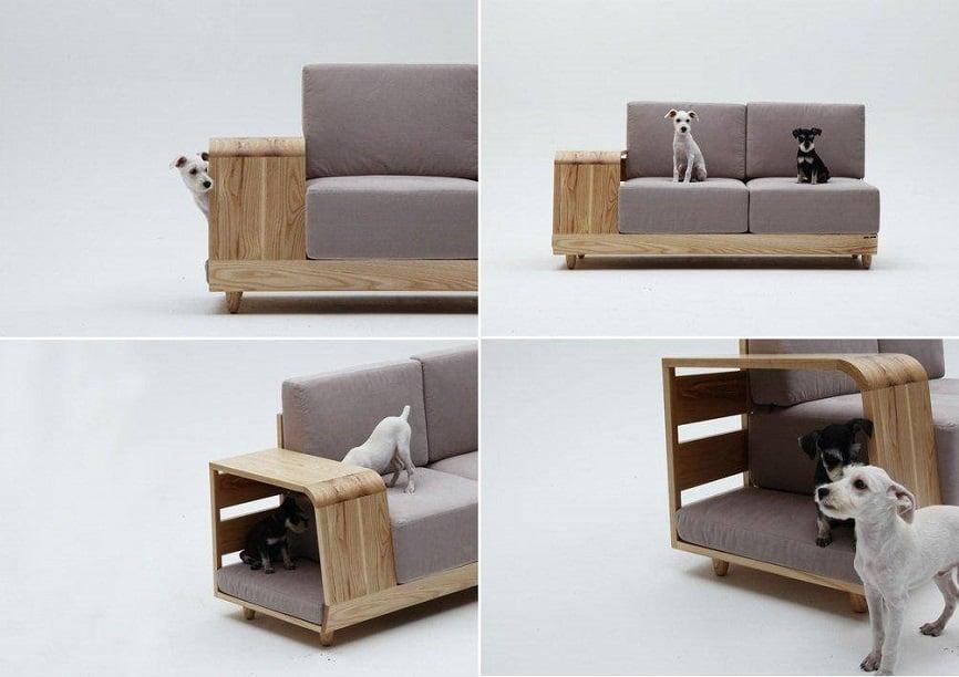 nội thất cho thú cưng